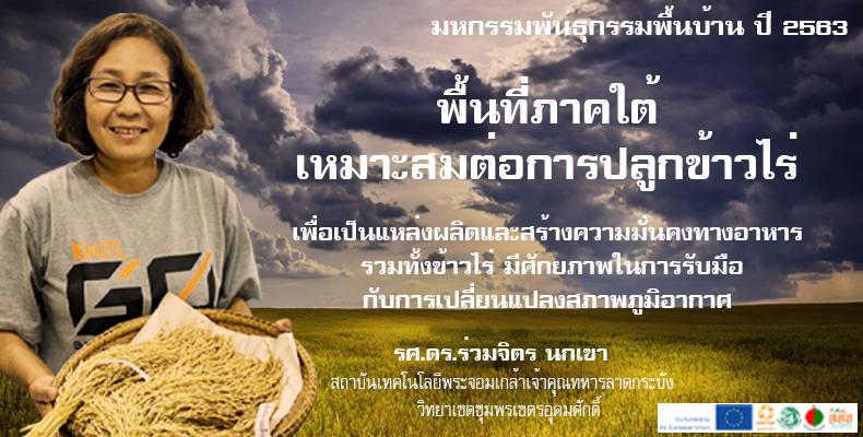 ข้าวไร่ : ศักยภาพในการรับมือการเปลี่ยนแปลงสภาพภูมิอากาศ
